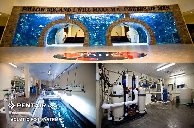 IBOC Aquarium