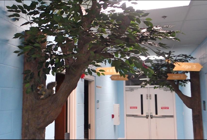 HallwayForest